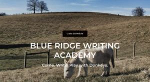Blue Ridge Writing Academy