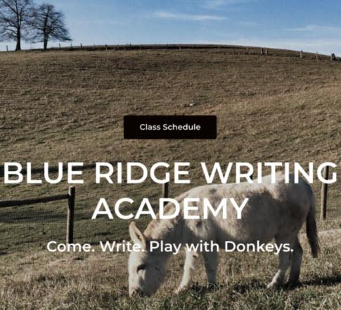 Blue Ridge Writing Academy