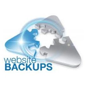 Does your website have a backup? If you assume it does, you're in for a surprise. How to make sure your website data backed up.